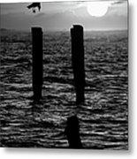 Sunrise Descent Bw - Outer Banks Ocracoke Metal Print