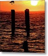 Sunrise Descent - Outer Banks Ocracoke Metal Print