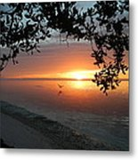 Sunrise Flight Metal Print