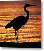 Sunrise Heron Metal Print