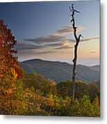 Sunrise In Shenandoah National Park Metal Print