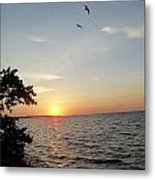 Sunrise Long Key State Park Metal Print by Susan Sidorski