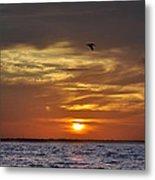 Sunrise On Tampa Bay Metal Print