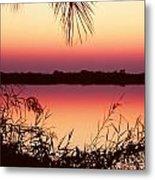 Sunrise On The Okavango Delta Metal Print