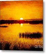 Sunrise On The Pond Metal Print