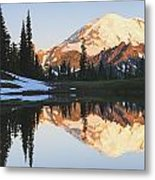 Sunrise Over A Small Reflecting Pond Metal Print
