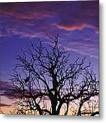 Sunrise Over Coongee Lakes With Moon.  Metal Print