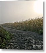 Sunrise Over Country Road Metal Print by Olivier Le Queinec