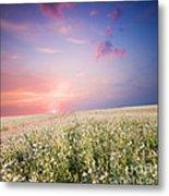 Sunrise Over Flower Land Metal Print