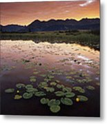 Sunrise Over Granadier Range Molas Pass Metal Print