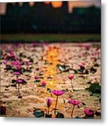 Sunrise Over The Lotus Flowers Of Metal Print
