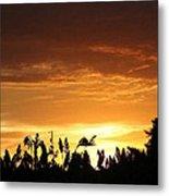 Sunrise Over The Milo Field Metal Print