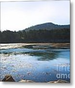 Sunrise Over Whaler's Cove At Point Lobos California Metal Print