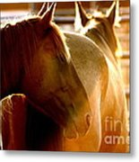 Sunrise Profile Metal Print