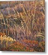 Sunrise Reflections On Dried Grass Metal Print