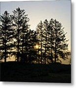 Sunrise Shines Through The Pines Metal Print