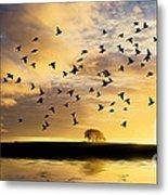 Birds Awaken At Sunrise Metal Print