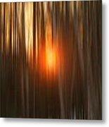 Sunrise Through Birches Metal Print