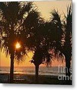 Sunrise Through The Palms Metal Print