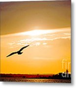 Sunscaped Metal Print