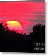 Sunset 365 17 Metal Print