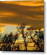 Sunset 7 Metal Print