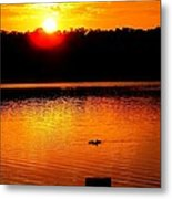 Sunset And Ducks Metal Print by Will Boutin Photos