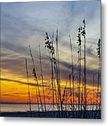 Sunset And Grasses Metal Print