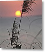 Sunset At 188 Mm Focal Length Metal Print