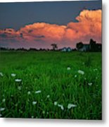 Sunset At A Farm Near Hawkesbury Metal Print