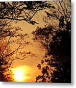 Sunset At Jungle Metal Print