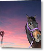 Sunset At The Farm Metal Print