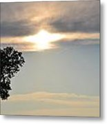 Sunset By Tree Metal Print