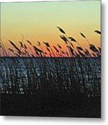Sunset Colors Island Beach State Park Nj Metal Print