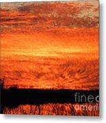 Sunset Detail  Metal Print