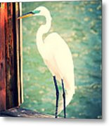 Sunset Dock Visitor Metal Print
