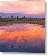 Everglades Afterglow Metal Print