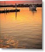 Sunset Excursion Metal Print