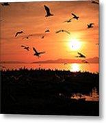 Sunset Flights Metal Print