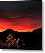 Sunset Forest In Red Metal Print
