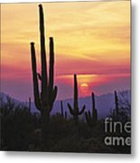 Sunset Glory Metal Print
