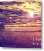 Sunset In The Desert Metal Print by Jelena Jovanovic