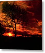 Sunset In The Field Metal Print