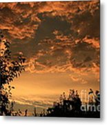 Sunset In The Orchard Metal Print