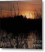 Sunset In The Pantenal Metal Print