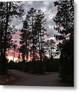 Sunset In The Pines Metal Print