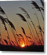 Sunset Island Beach State Park Nj Metal Print