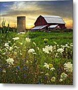 Sunset Lace Pastures Metal Print by Debra and Dave Vanderlaan