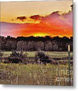Sunset Meadow Metal Print