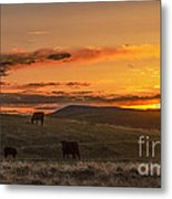 Sunset On Open Range Metal Print
